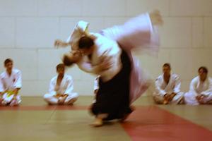 Abteilung Aikido